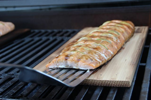 Fisch vom Camping Gasgrill